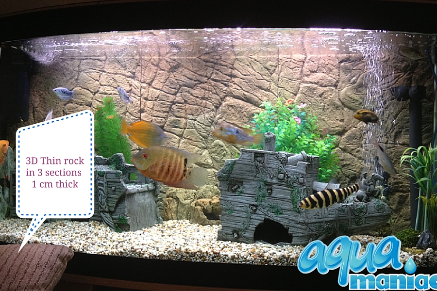 Aquarium Background in aquarium with braces